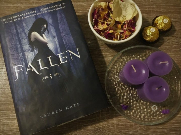 Fallen Book Review
